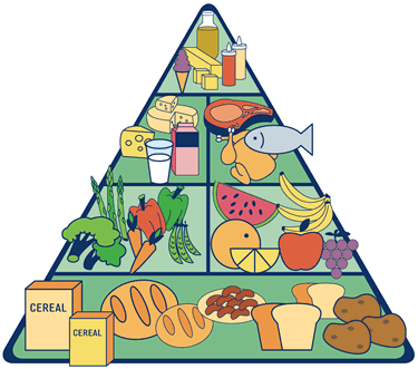 Food pyramid of Terica Uriol